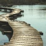 Texto motivacional – Construindo pontes