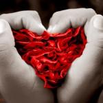 Texto motivacional: um amor especial