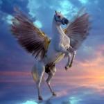 Texto motivacional – Seu cavalo pode voar