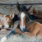 Texto motivacional – O cavalo e o porco