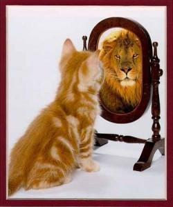 Mensagem Motivacional - Acredite em você!